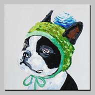billiga Djurporträttmålningar-Hang målad oljemålning HANDMÅLAD - Djur Moderna Europeisk Stil Inkludera innerram