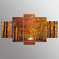 Afdrukken Op Opgespannen DoekVijf panelen Horizontaal Print Muurdecoratie For Huisdecoratie