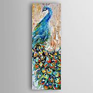 billiga Djurporträttmålningar-Hang målad oljemålning HANDMÅLAD - Djur Abstrakt Duk