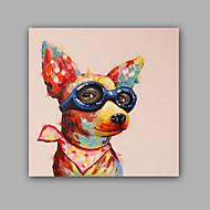 מצויר ביד בעלי חיים קלסי יצירתי מודרני / עכשווי פנל אחד בד ציור שמן צבוע-Hang For קישוט הבית