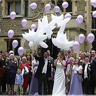 5kpl iso koko 1055x42cm helium kyyhkysen hääpallo ilmapallo sisustus valkoinen kyyhky balloon105 * 42cm