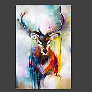 מצויר ביד בעלי חיים אומנותי מופשט (אבסטרקטי) מגניב פנל אחד בד ציור שמן צבוע-Hang For קישוט הבית