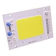 50w ledet cob chip vandtæt ip65 led lampe pære 220v smart ic til diy spotlight floodlight varm / cool hvid (1 stk)