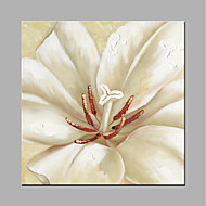 preiswerte Neu Eingetroffen-Handgemalte Blumenmuster/Botanisch Quadratisch, Modern Segeltuch Hang-Ölgemälde Haus Dekoration Ein Panel