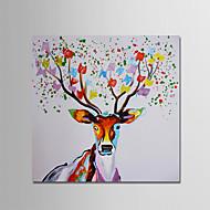 Ručno oslikana Životinja Moderna Jedna ploha Platno Hang oslikana uljanim bojama For Početna Dekoracija