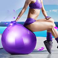 Χαμηλού Κόστους Στηρίγματα Γιόγκα & Πιλάτες-55εκ Μπάλα άσκησης / μπάλα γιόγκα Επαγγελματικό, Αντιεκρηκτική PVC Υποστήριξη 500 kg Με Αντλία ποδιών Φυσική Θεραπεία, Εκπαίδευση εξισορρόπησης, Σταθερότητα Για την