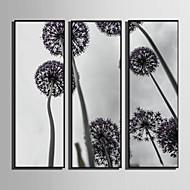 billige Innrammet kunst-Blomstret/Botanisk Botanisk Tegning Veggkunst, Plastikk Materiale med ramme For Hjem Dekor Rammekunst Stue