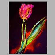 billiga Oljemålningar-Hang målad oljemålning HANDMÅLAD - Abstrakt / Blommig / Botanisk Moderna Duk