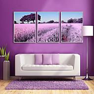 billige Innrammet kunst-Innrammet Lerret / Innrammet Sett - Landskap / Blomstret / Botanisk Plastikk Tegning