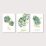 Grafika Reprodukce maleb na plátně - Zátiší Květinový / Botanický motiv Moderní Tři panely Umělecké tisky