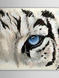 Dipinta a mano Animali Un Pannello Tela Hang-Dipinto ad olio For Decorazioni per la casa