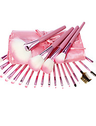 cheap -22 Makeup Brushes Set Others / Synthetic Hair Face / Lip / Eye
