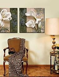 abordables -Impresiones en Lienzo Estirado Botánico Dos Paneles Horizontal Estampado Decoración de pared Decoración hogareña