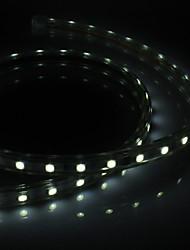 billige -1m Lysslynger 60 lysdioder 5050 SMD Hvid Vandtæt