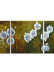 Óleo pintado mão pintura botânica Flores brancas com Set quadro esticada de 2