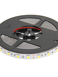 DC12 5m 300 leds Warm White
