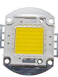 ZDM™ DIY 60W High Power 5000-6000LM Natural White Light Integrated LED Module (32-35V)