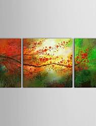 baratos -Pintados à mão Floral/Botânico Quadrada Tela de pintura Pintura a Óleo Decoração para casa 3 Painéis