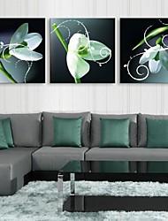 e-Home® allungata guidato Tela artistica fiore verde effetto del flash led lampeggiante set di stampa in fibra ottica di 3
