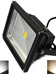 LED Floodlight 1 High Power LED 5000 lm Warm White Cold White 2800-7000 K AC 85-265 V