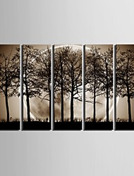 cheap -E-HOME® Stretched Canvas Art The Night Under The Shadows of The Trees Decoration Painting  Set of  5
