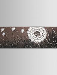 Недорогие -iarts масляной живописи современных пейзаж цветы случайным летающие Одуванчик ручной росписью холста с растянутыми кадра