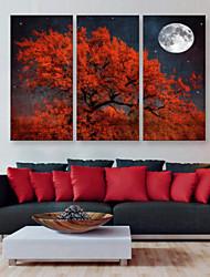 preiswerte -E-Home® Leinwand bist der rote Baum Dekoration Malerei Set von 3