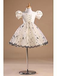 cheap -Princess Knee Length Flower Girl Dress - Tulle Short Sleeves Bateau Neck