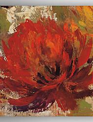 pintura a óleo moderno mão pintura abstrata flor telas pintadas com esticada enquadrado pronto para pendurar