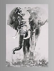 Affiche de toile d'art de mur d'éléphant prêt à accrocher