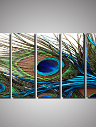 cheap -5 Panels Animal painting Peacock Picture Print on Canvas Unframed