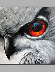 economico -Dipinta a mano Animali Quadrata,Modern Un Pannello Tela Hang-Dipinto ad olio For Decorazioni per la casa