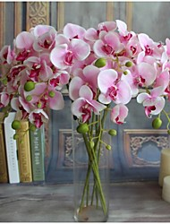 cheap -Artificial Flowers 5 Branch Modern Style Orchids Tabletop Flower
