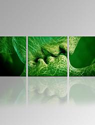 Astratto / Tempo libero / Riproduzione / Paesaggio / Botanical / Moderno / Romantico / Viaggi Print Canvas Tre PannelliPronto da