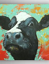 billige -Hang-Painted Oliemaleri Hånd malede - Dyr Moderne Lærred