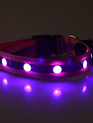 cheap -Dog Collar LED Lights Reflective Nylon Purple Yellow Red Green Blue