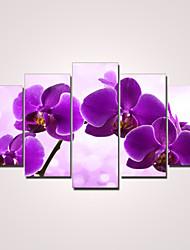 abordables -Impresiones en Lienzo Estirado Florales Modern, Cinco Paneles Lona Horizontal Estampado Decoración de pared Decoración hogareña