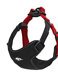 Harness Adjustable/Retractable Breathable Fashion Padded Nylon