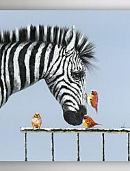 ručně malované olejomalba zvířat ptáci líbat zebra s nataženém rámu 7 stěny arts®