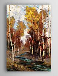 ručně malované olejomalba krajina zalesněný potok s nataženém rámem 7 stěny arts®