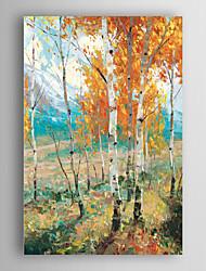 ručně malované olejomalba krajina abstraktní pomerančovníky s nataženém rámem 7 stěny arts®