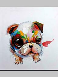 baratos -grande pintura a óleo moderna pintada à mão grande do cão na foto da arte da parede da lona para a decoração home com quadro