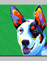 dipinto a mano pittura a olio moderna astratta animale cane su arte della parete tela con telaio allungato pronto da appendere