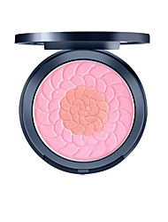 cheap -1 Blush Dry Pressed powder Other Face China