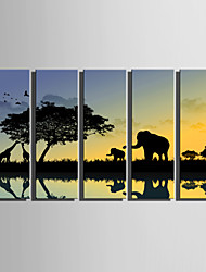 E-HOME® Stretched Canvas Art Animals Walking By The River At Sunset Decoration Painting  Set Of 5