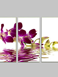 povoljno -Romantika Slobodno vrijeme Botanički Moderna Pop art Tri plohe Vertikalno Print Zid dekor Početna Dekoracija