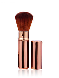 cheap -1 Powder Brush Others Professional / Travel Metal Face Others