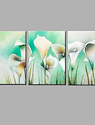 Hand Painted Wihte Lily Flower Oil Painting with Stretched Frame Ready to Hang