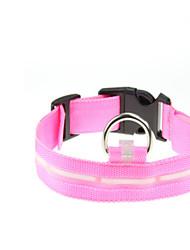 billige -Hund Krave Strobe Ensfarvet Nylon Grøn / Blå / Lys pink