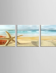 cheap -Canvas Set Famous / Landscape Modern / Classic,Three Panels Canvas Square Print Wall Decor For Home Decoration